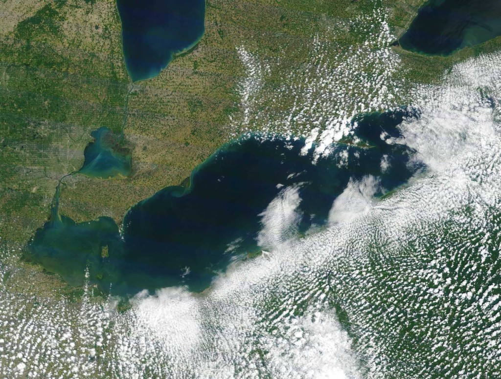 A satellite photo showing Lake Erie taken by NOAA on June 14. If you look at the bottom left portion of the image (Northwest Ohio), you can clearly see blue-green algal blooms growing already on the lake surface (courtesy of NOAA Great Lakes Environmental Research Laboratory).