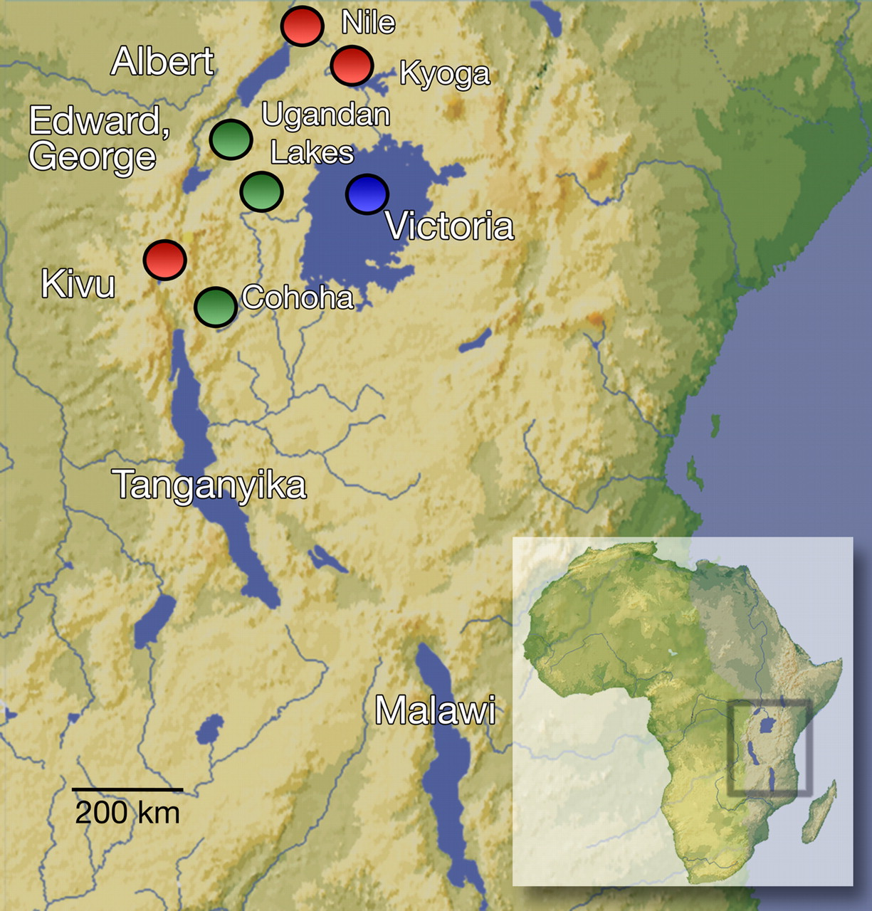Map Of Africa Lake Victoria.Africa S Great Lakes Were Central To Human Evolution