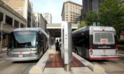 rta healthline buses
