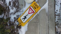 saddest crosswalk sign